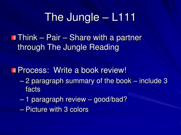The Jungle – L111