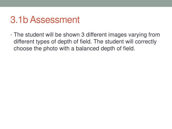 3.1b Assessment