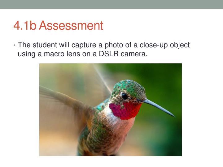 4.1b Assessment