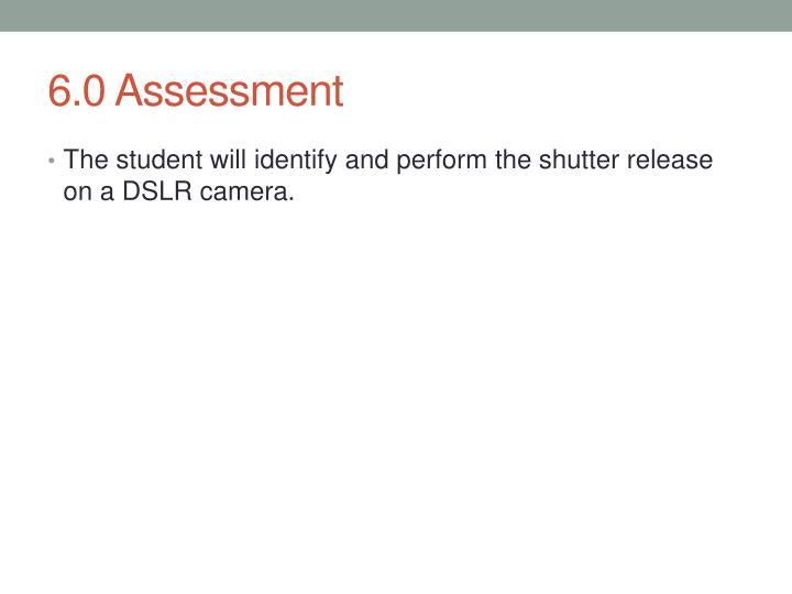6.0 Assessment
