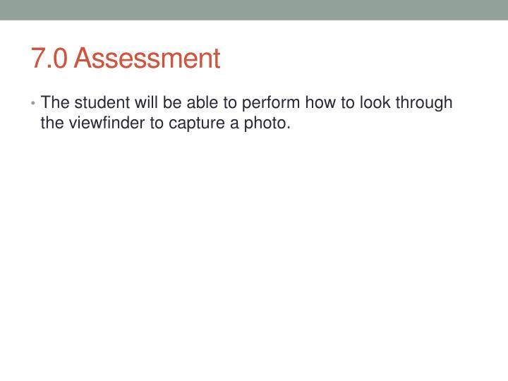 7.0 Assessment