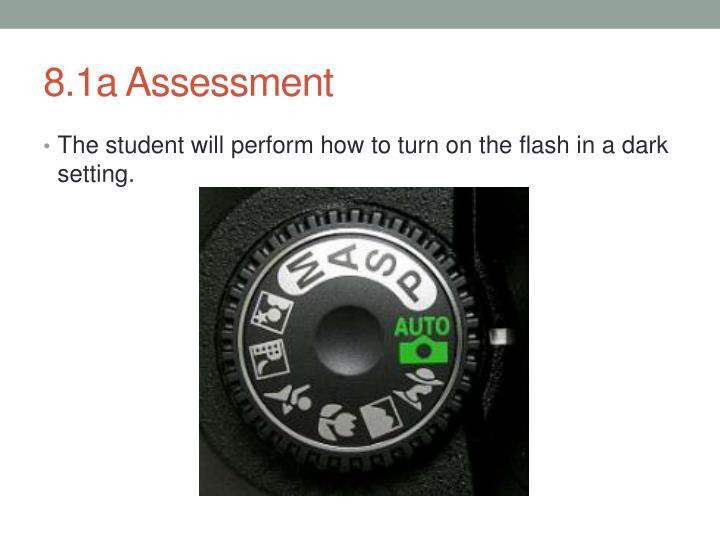 8.1a Assessment
