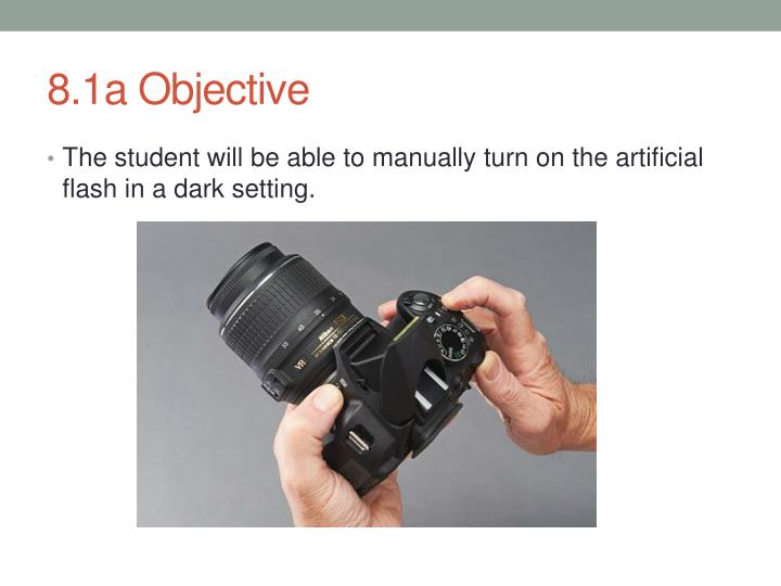 8.1a Objective