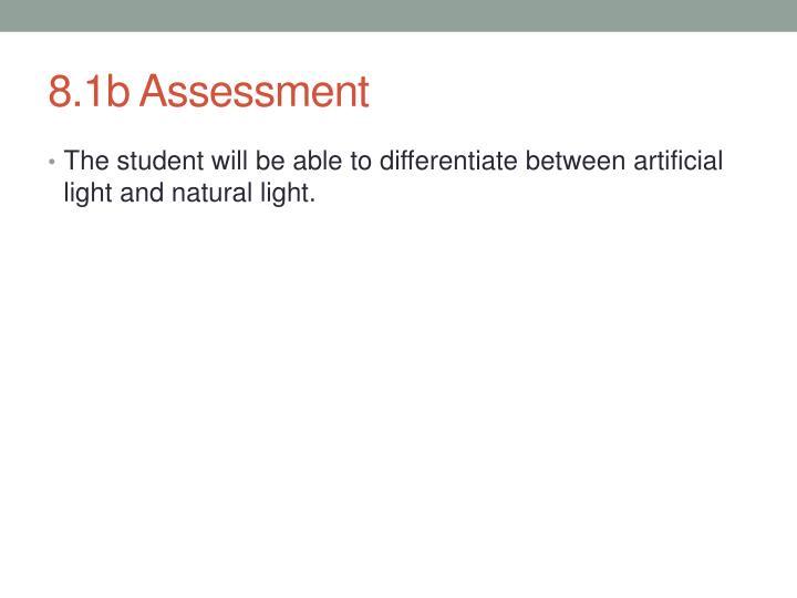 8.1b Assessment