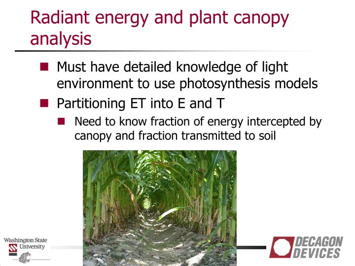 Radiant energy and plant canopy analysis