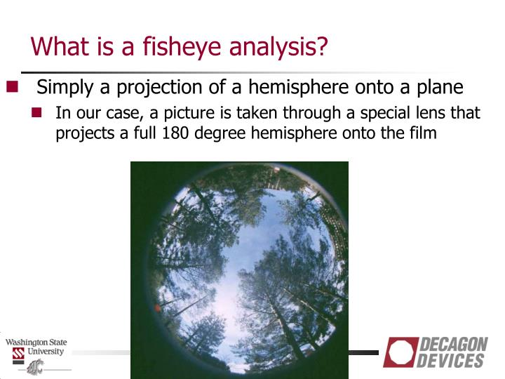 What is a fisheye analysis?
