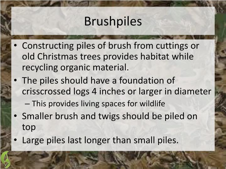 Brushpiles
