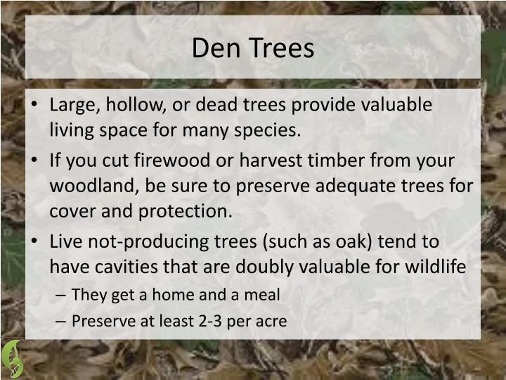 Den Trees