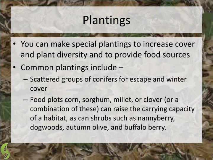 Plantings