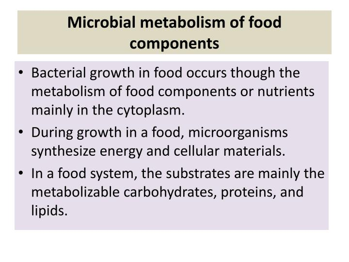 Microbial metabolism of food components