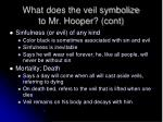 what does the veil symbolize to mr hooper cont