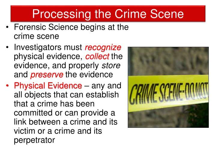 Processing the Crime Scene