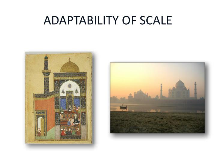ADAPTABILITY OF SCALE