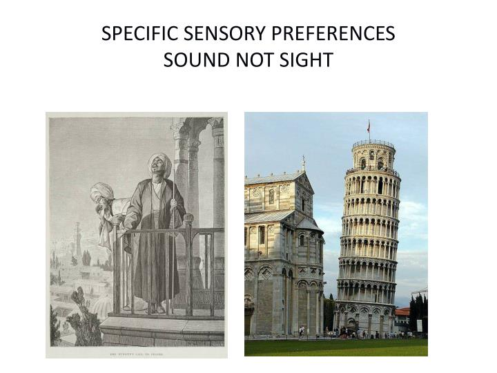 SPECIFIC SENSORY PREFERENCES