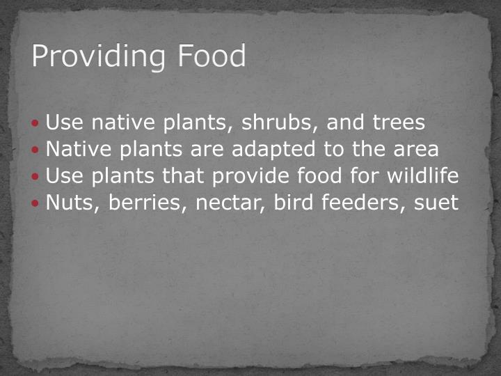 Providing Food