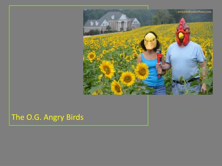 The O.G. Angry Birds