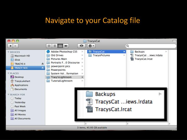 Navigate to your Catalog file