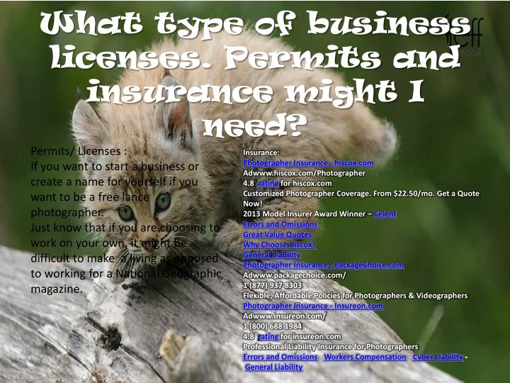 What type of business licenses. Permits and insurance might I need?
