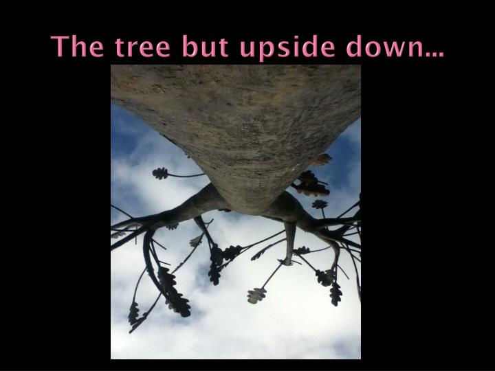The tree but upside down...