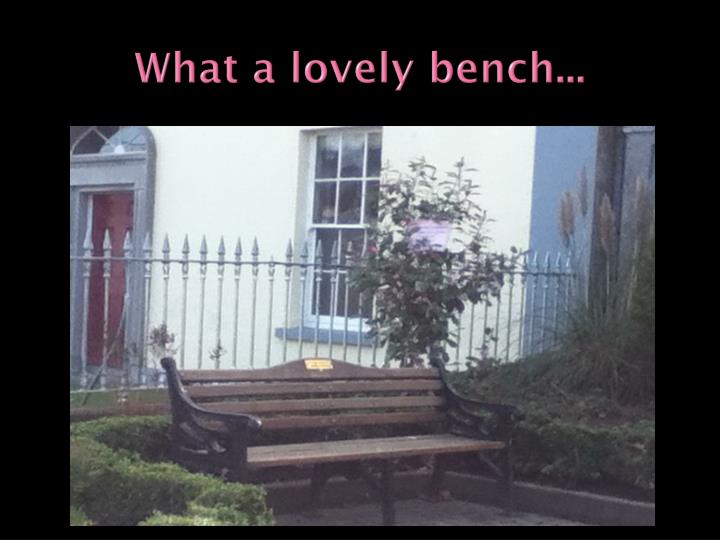 What a lovely bench...