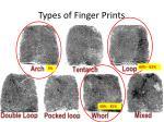 types of finger prints