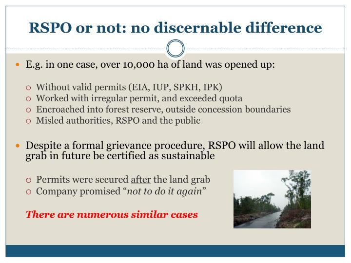 RSPO or not: no discernable difference