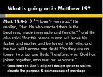 what is going on in matthew 191