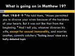 what is going on in matthew 194