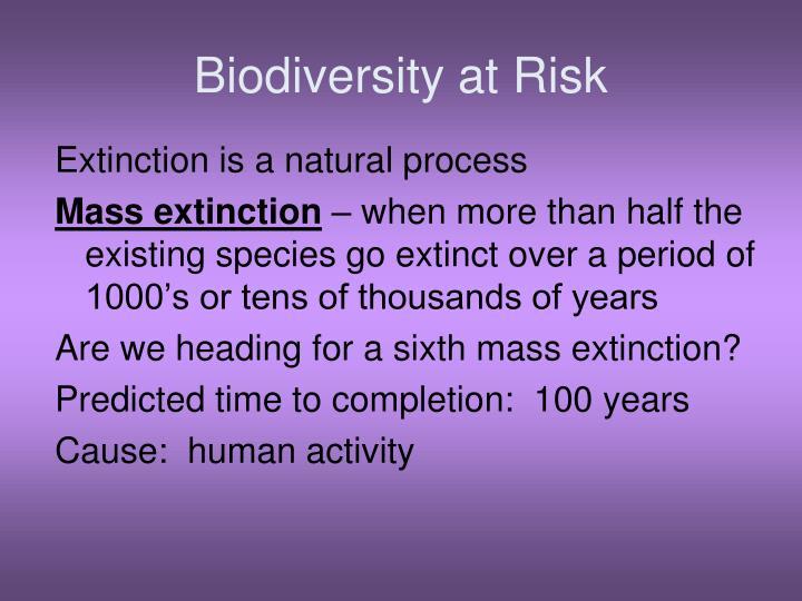 Biodiversity at Risk