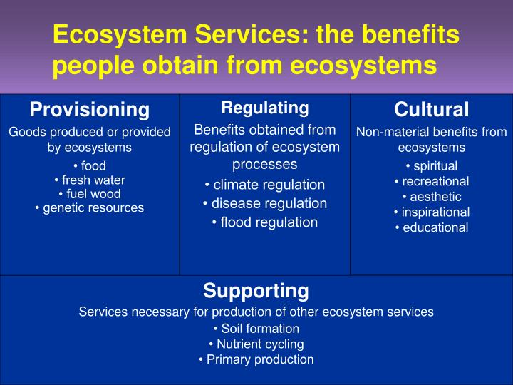 Ecosystem Services: the benefits people obtain from ecosystems