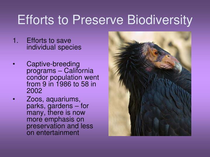 Efforts to Preserve Biodiversity