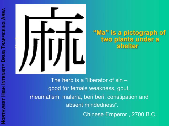 """Ma"" is a pictograph of two                                         two plants under a shelter                                            shelter"