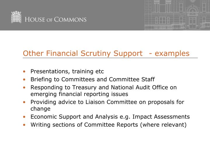 Other Financial Scrutiny Support	- examples