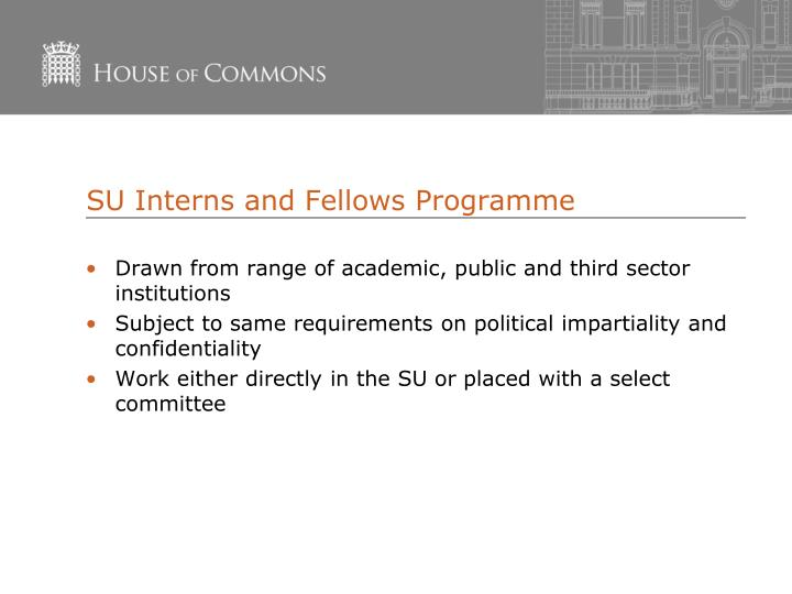 SU Interns and Fellows Programme