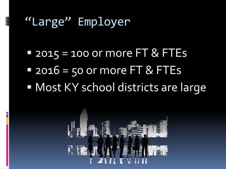 """""""Large"""" Employer"""