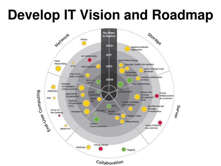 Develop IT Vision and Roadmap