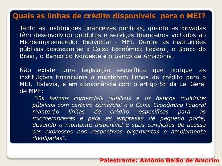 Tanto as instituições financeiras públicas, quanto as privadas têm desenvolvido produtos e serviços financeiros voltados ao Microempreendedor Individual - MEI. Dentre as instituições públicas destacam-se a Caixa Econômica Federal, o Banco do Brasil, o Banco do Nordeste e o Banco da Amazônia.