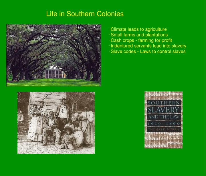 Life in Southern Colonies