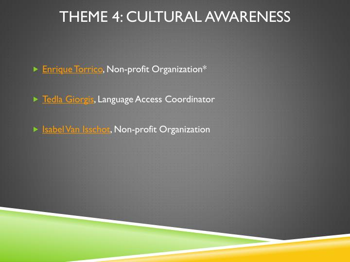 Theme 4: Cultural Awareness