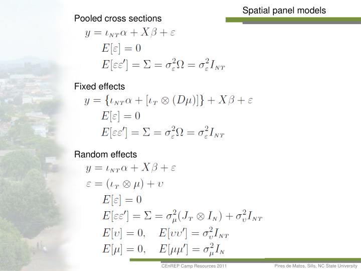 Spatial panel models