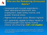 who are the remaining uninsured adults