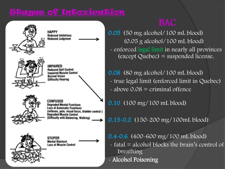 Stages of Intoxication