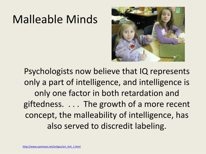 Malleable Minds