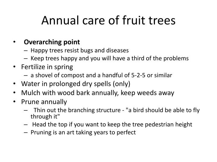 Annual care of fruit