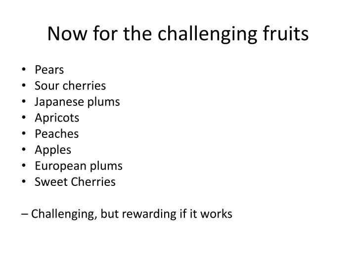Now for the challenging fruits