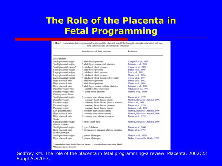 The Role of the Placenta in