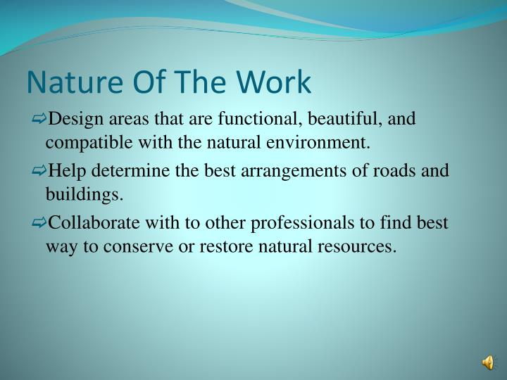 Nature of the work