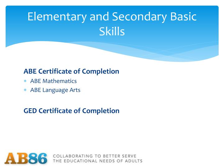 Elementary and Secondary Basic Skills