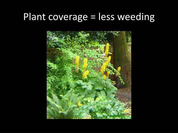 Plant coverage = less weeding