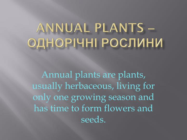 Annual plants